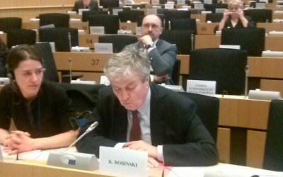 Security Threats and Challenges to Reforms in the EaP CSF Position at the Euronest PA